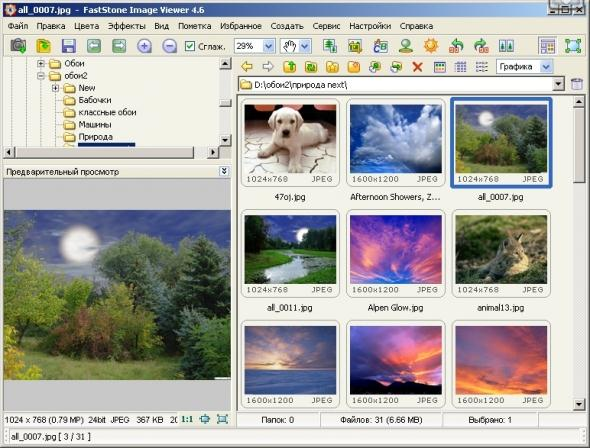 Faststone Image Viewer